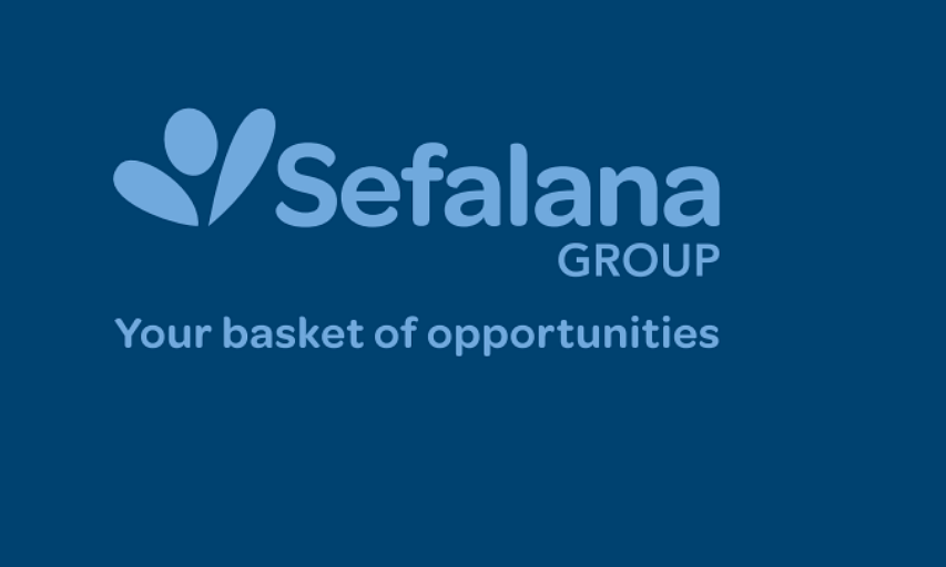 Sefalana Annual Report 2019