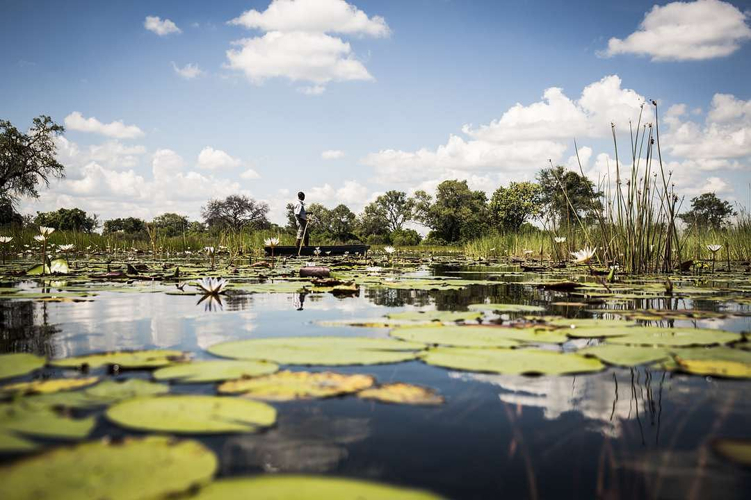 Reconnect to Africa - The Okavango Delta