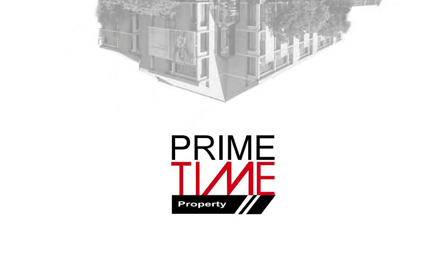 PrimeTime Property Holdings Annual Report 2008