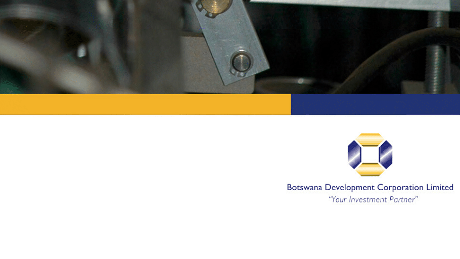 BDC Annual Report 2008