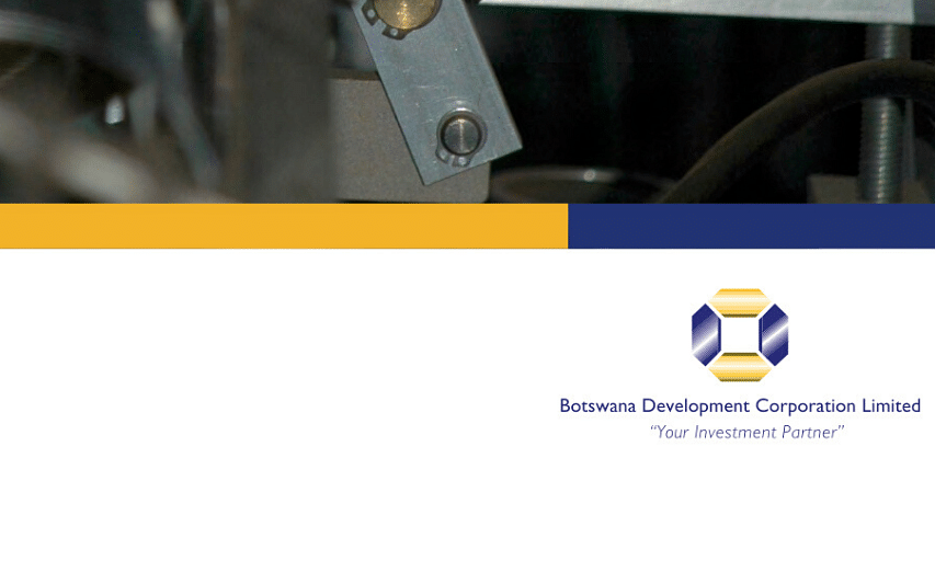 BDC Annual Report 2008
