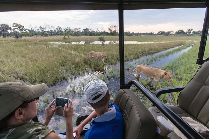 Family game drive