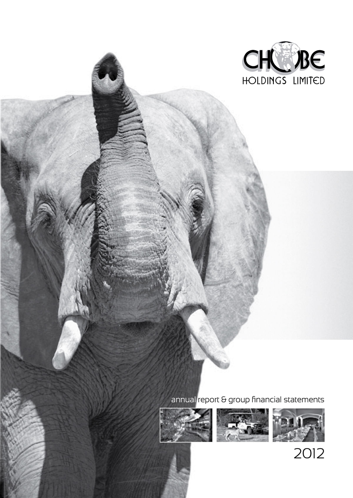 Chobe Holdings Limited Annual Report 2012