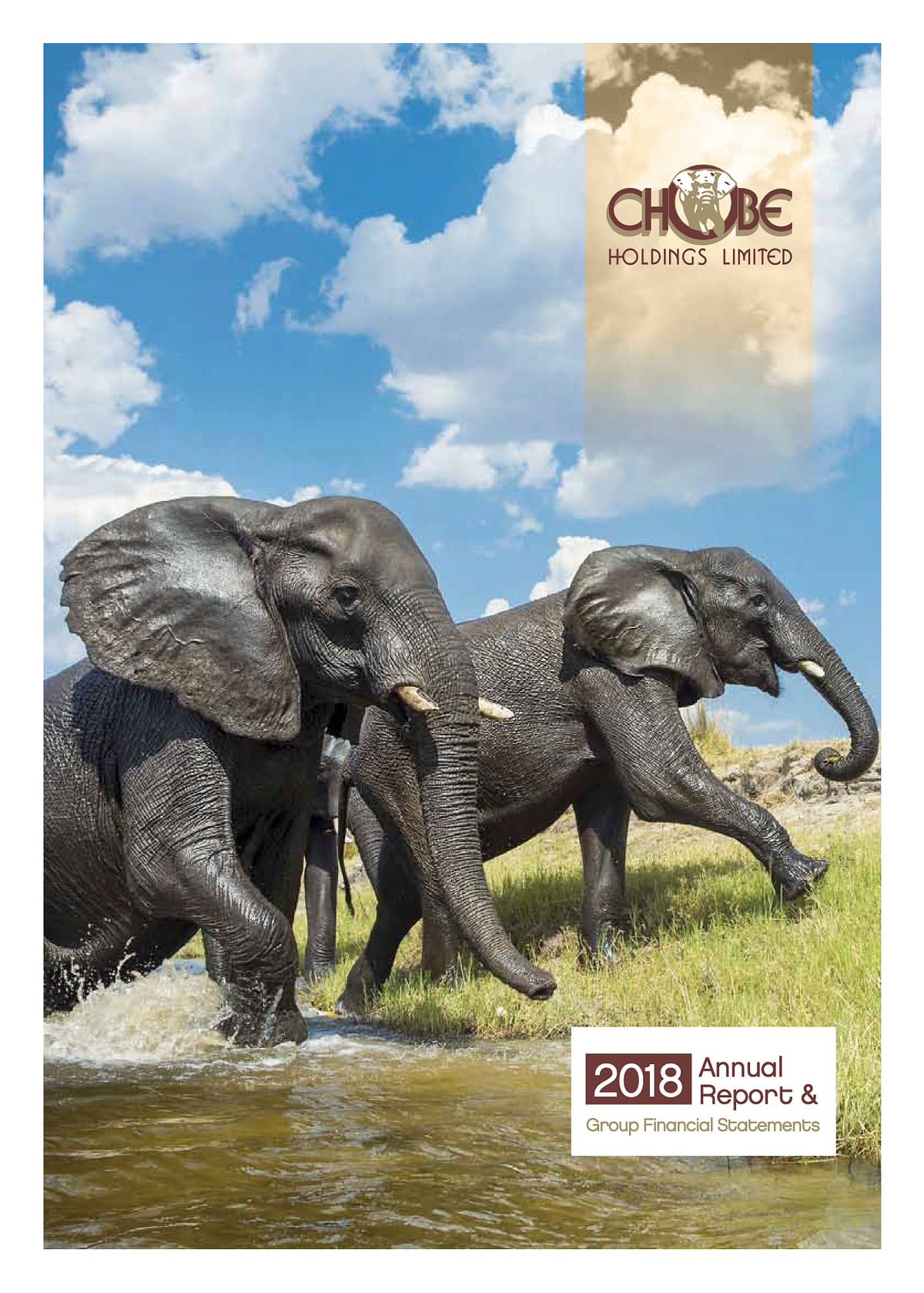 Chobe Holdings Limited Annual Report 2018