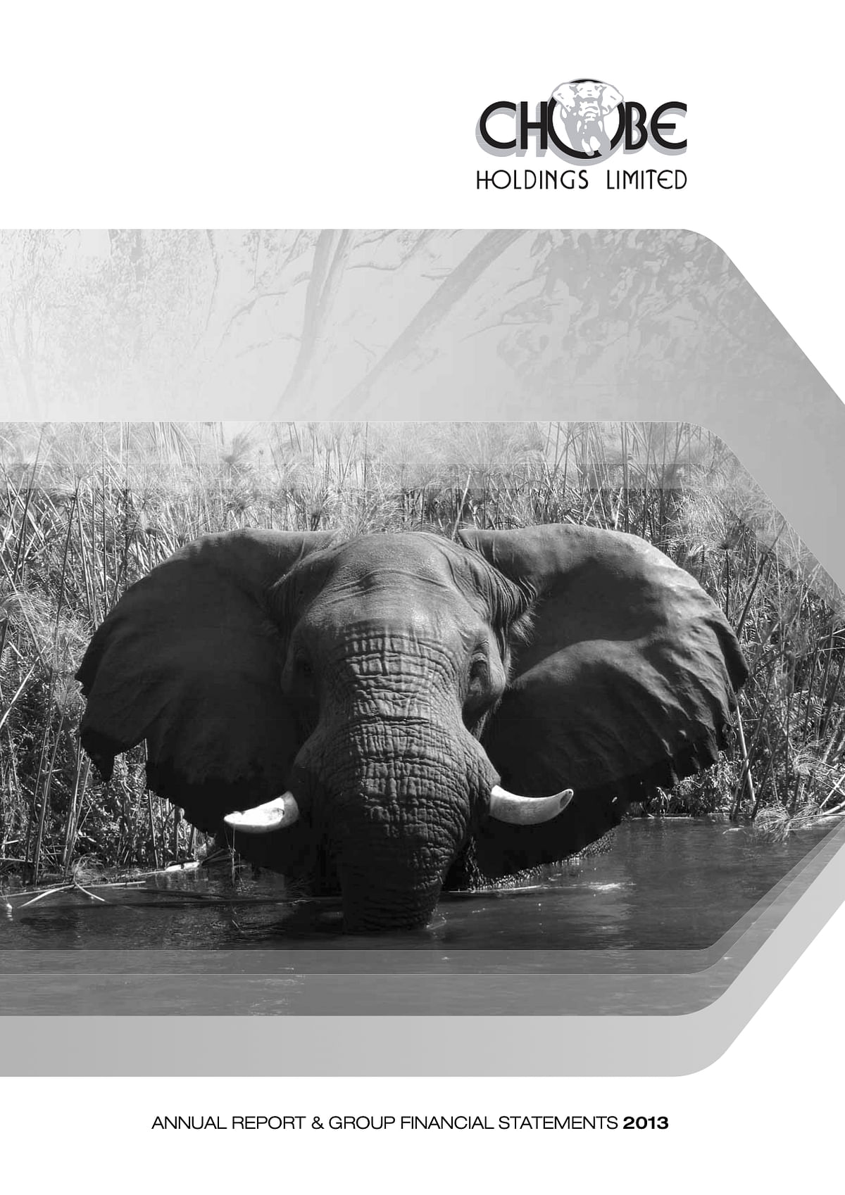 Chobe Holdings Limited Annual Report 2013