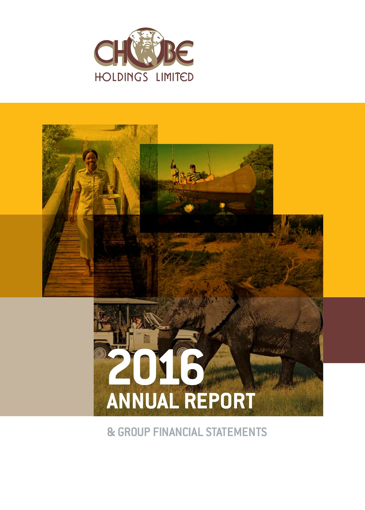 Chobe Holdings Limited Annual Report 2016