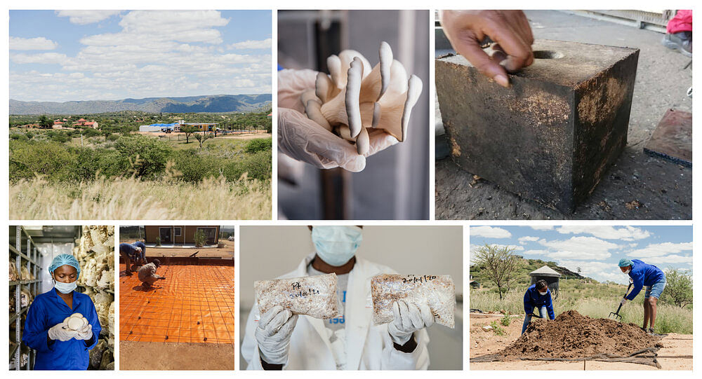 Standard Bank Partner with MIT on House & Food Project In Namibia