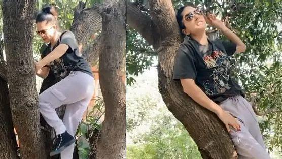 पेड़ पर चढ़ 'सनी लियोन' ने कुछ ऐसा किया कि वायरल हो गया Video...