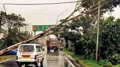सुपर साइक्लोन 'अम्फान' की तूफानी हवाओं और बारिश से भारी तबाही, बंगाल और ओडिशा में 15 से ज्यादा मौतें