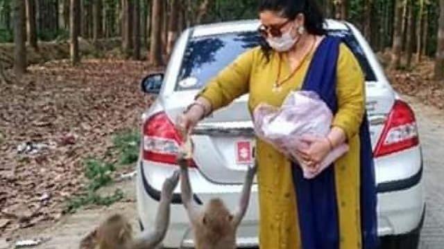 मंदिर बंद होने से बंदरों का छिना भोजन, गोरखपुर की ऐश्वर्या खिला रहीं उन्हें फल-चने