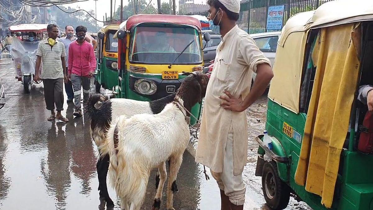 Corona: ईद के बाद अब फीका रहेगा बकरीद का त्योहार, बकरा लेने को नहीं मिल रहे खरीददार
