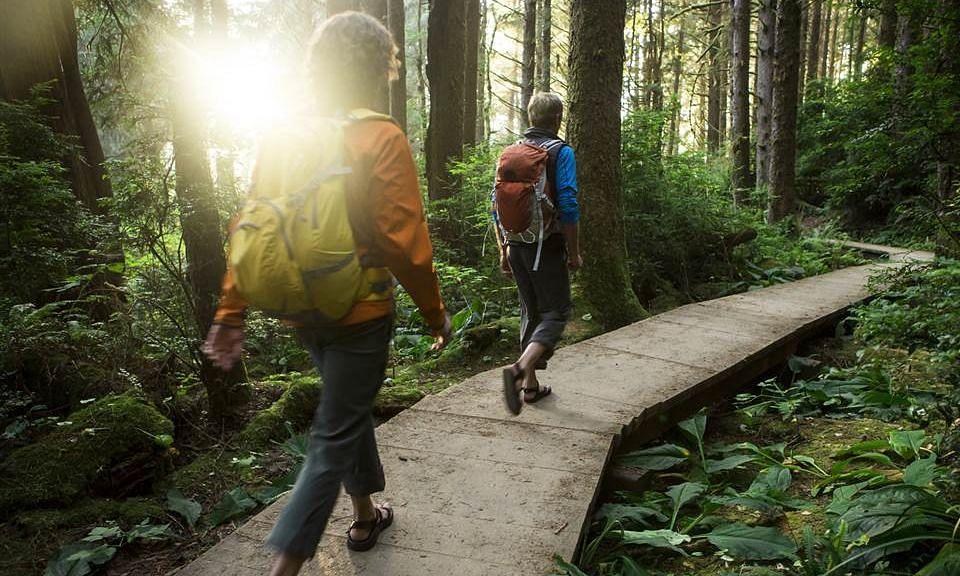 मनोरंजन-खरीदारी के लिए पैदल यात्रा नहीं, लेकिन...किसी काम के लिए पैदल चलना सेहत के लिए फायदेमंद: रिसर्च