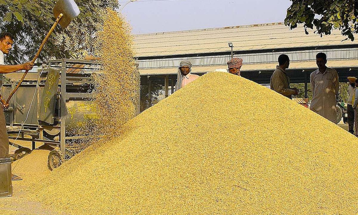 एमएसपी पर सिर्फ वादे नहीं, तमाम फसलों की बिक्री की गारंटी चाहते हैं किसान