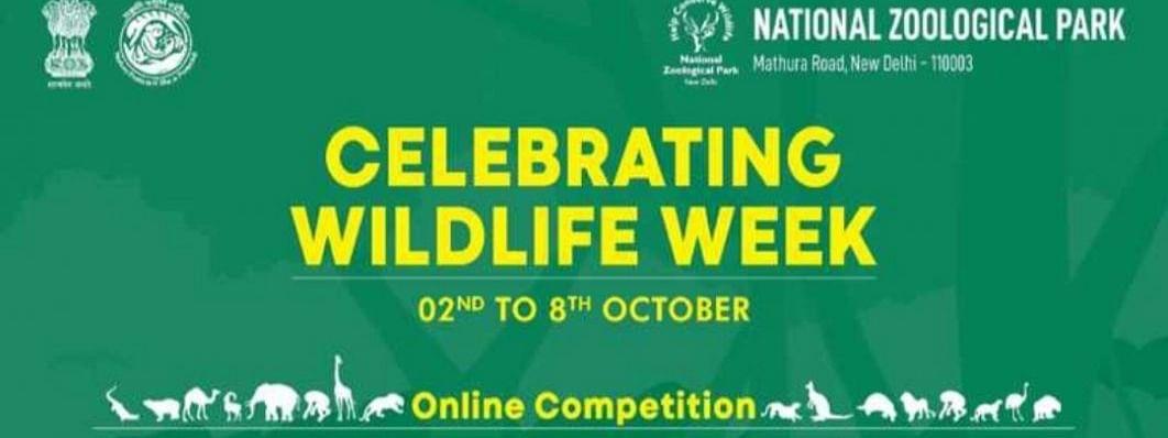दिल्ली चिड़ियाघर में 2 अक्टूबर से 8 अक्टूबर तक मनाया जाएगा वन्यजीव सप्ताह