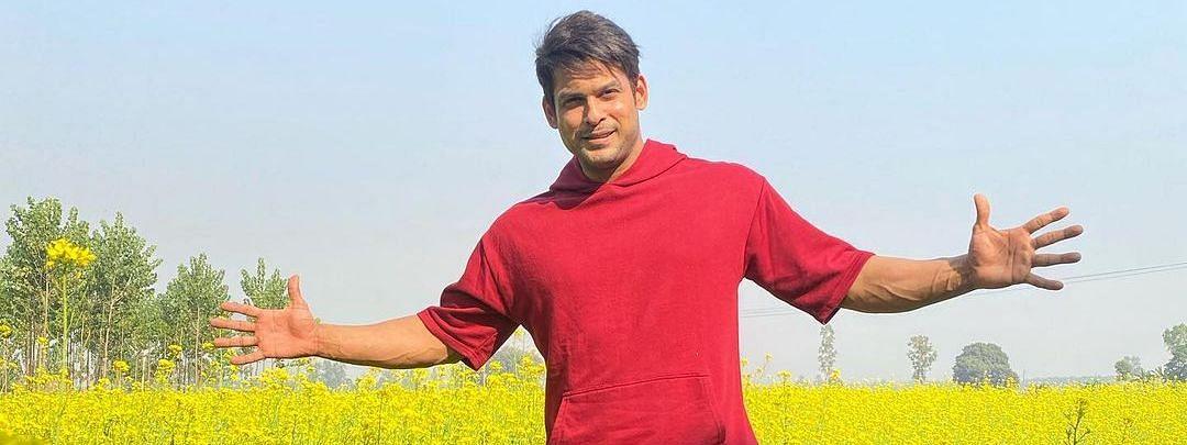 पंजाब पहुंच शाहरुख खान बने सिद्धार्थ शुक्ला, सरसों के खेत में दिया किंग खान स्टाइल में पोज
