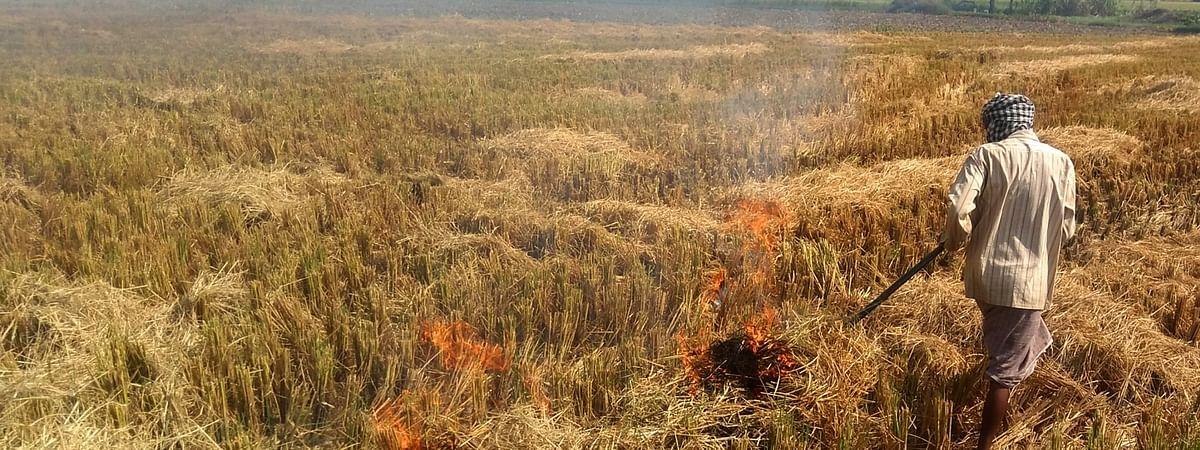 उत्तर प्रदेश में पराली जलाने पर 2 हजार किसानों पर मामला दर्ज