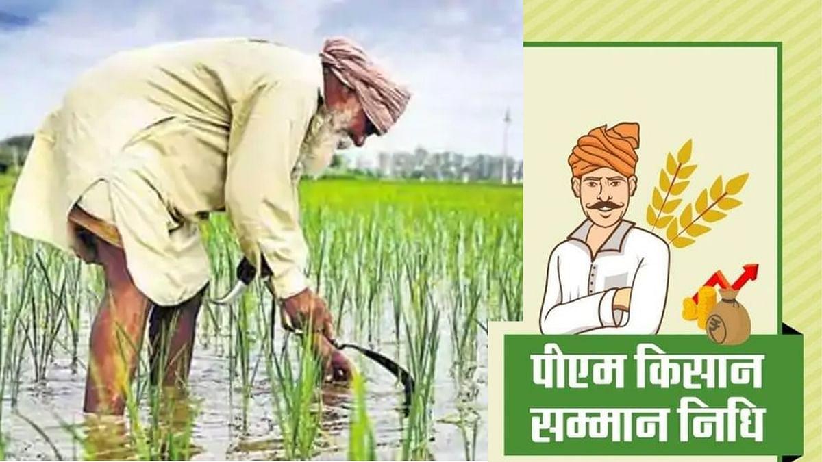 पीएम किसान: सरकार द्वारा बंट गए अयोग्य लोगों को 1,364 करोड़ रुपये - RTI