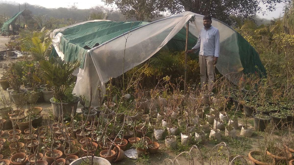 कृषि कानूनों के विरोध में सिंघु पर रोडब्लॉक होने से नर्सरी व्यवसाय प्रभावित