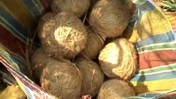 उत्तर प्रदेश: कचरे के ढेर में लड़के ने बम को समझा गेंद, धमाके में घायल