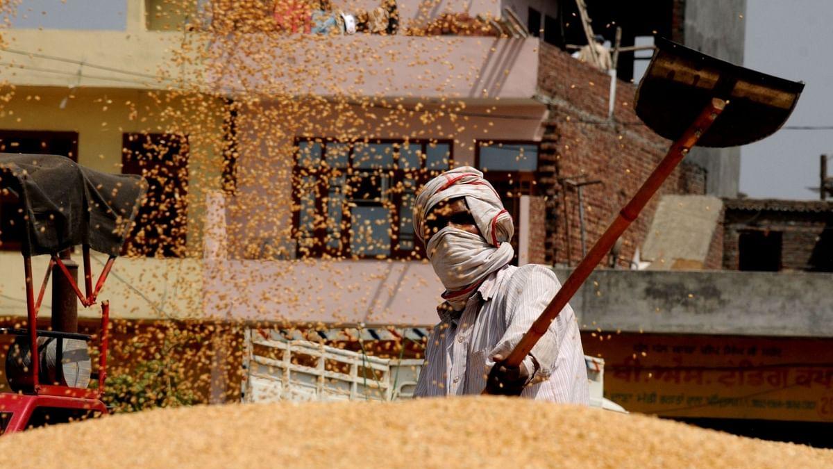 यूपी में अब तक 6.71 लाख कृषकों से 33.77 लाख मीट्रिक टन गेहूं खरीदा गया