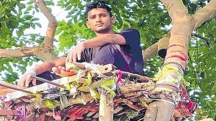 कोविड पॉजिटिव तेलंगाना के एक युवा ने 11 दिन पेड़ पर बिताए