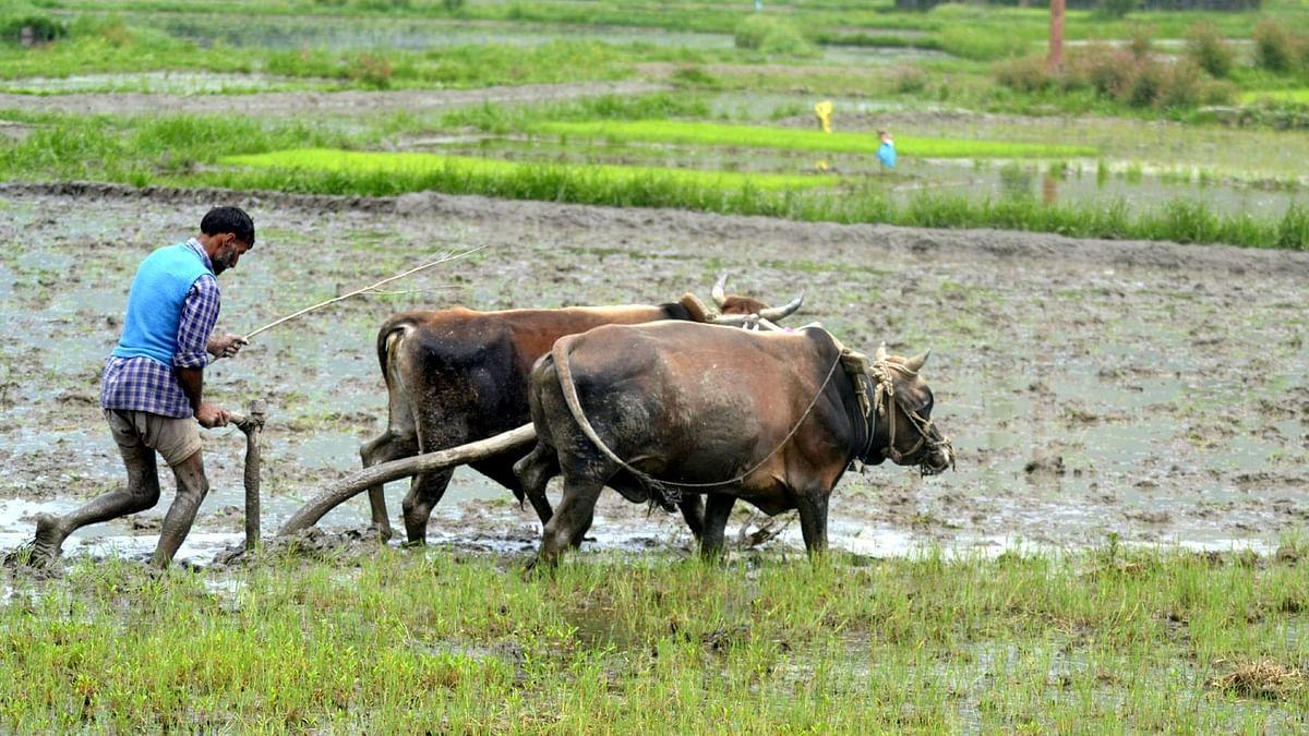 उत्तर प्रदेश में सिंचाई का बढ़ेगा रकबा और किसानों की कमाई भी
