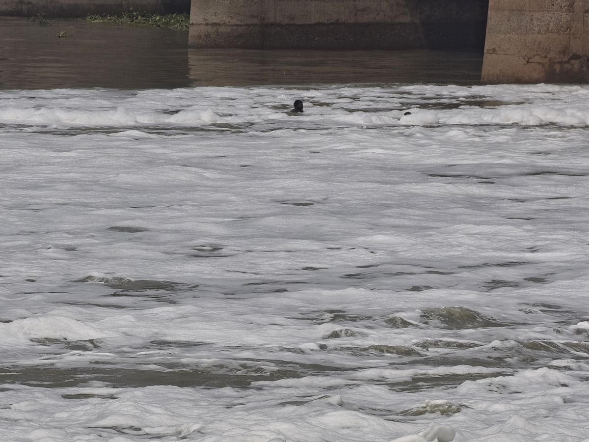 पानी का न्यूनतम प्रवाह नहीं होने से यमुना नहाने लायक नहीं: दिल्ली सरकार