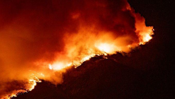 वाशिंगटन में 'रेड एप्पल आग' पर 50 प्रतिशत काबू पाया गया