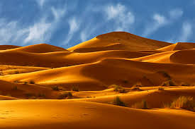 Do you know Desert Cover more than one-quarter of earth's land surface?