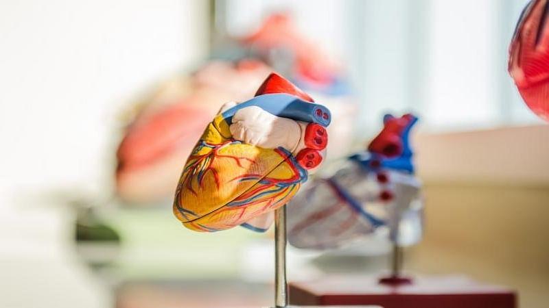 दिल से संबंधित टेस्ट से मिल सकता है कोविड रोगियों में मौत के जोखिम का संकेत: शोध