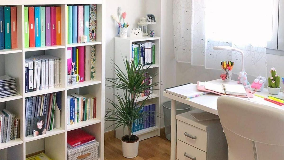 Vastu Tips for Study Room: बच्चों का पढ़ाई में नहीं लगता मन तो आज़माएँ ये उपाय