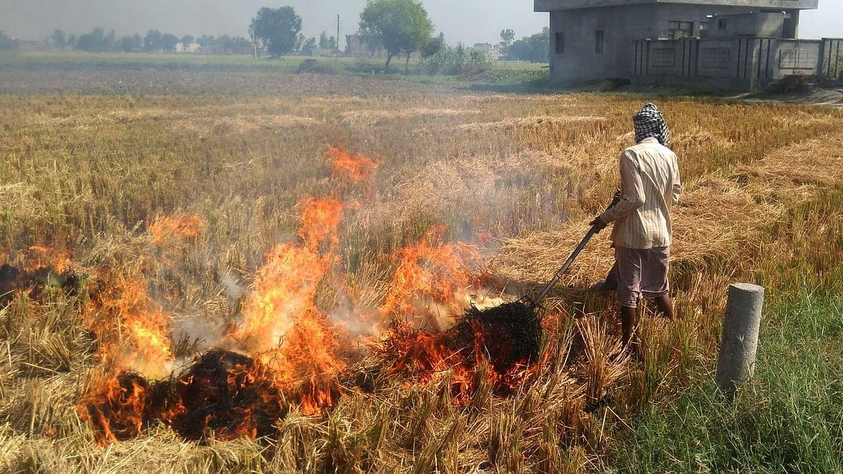 पराली जलाना: इलेक्ट्रिक वाहनों के लिए हाइड्रोजन पैदा कर सकते हैं किसान