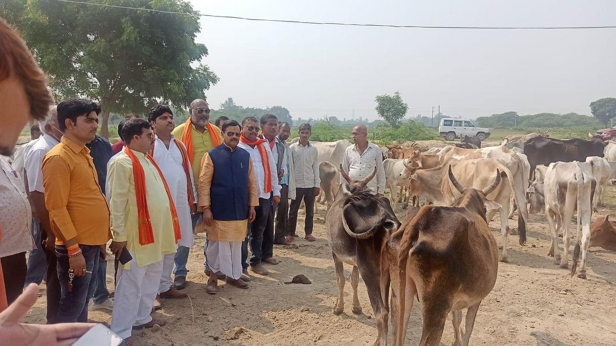 उ0प्र0 गोसेवा आयोग के उपाध्यक्ष अतुल सिंह ने हरदोई के गो आश्रय स्थलों का किया निरीक्षण