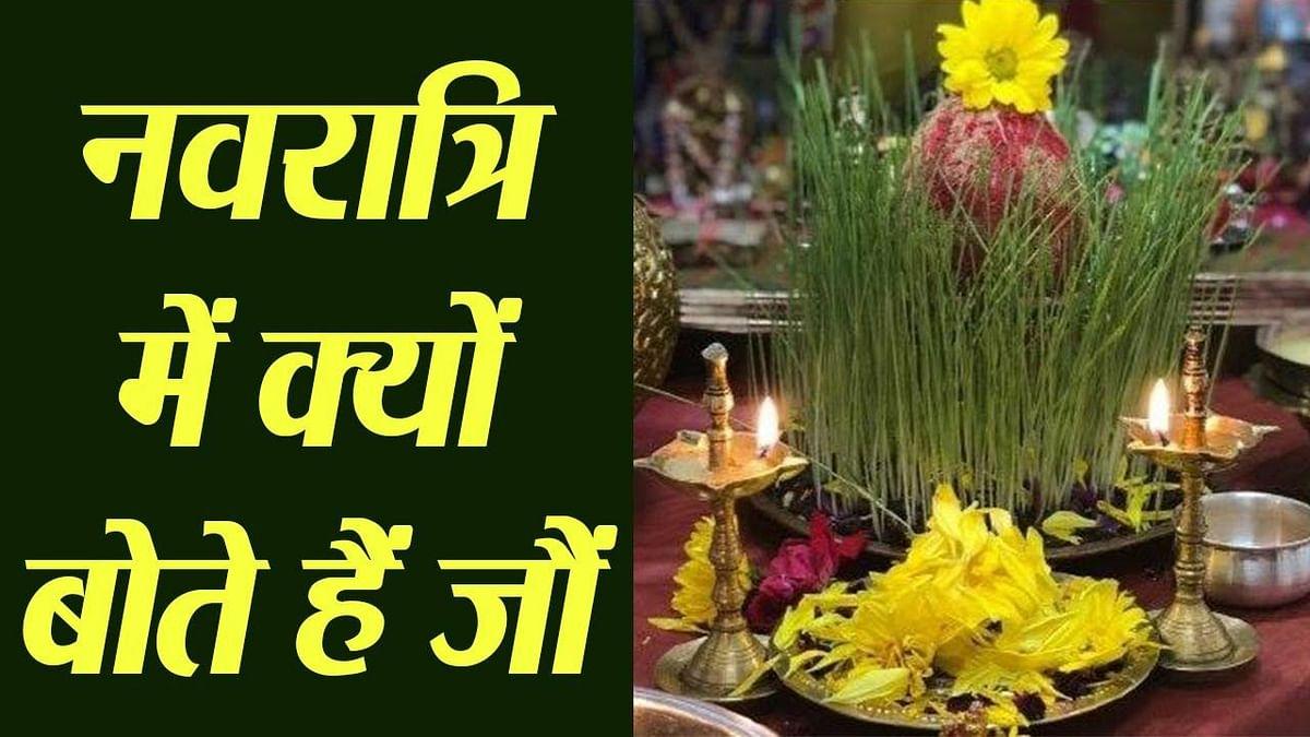 Navratri 2021: जौ बोने की हैं विशेष मान्यता, इसके बिना नवरात्रि में मां दुर्गा की पूजा मानी जाती है अधूरी